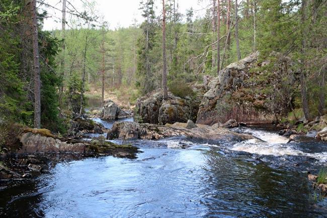alven-norr650px