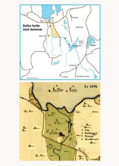 Salbo-hytta-med-dammarweb