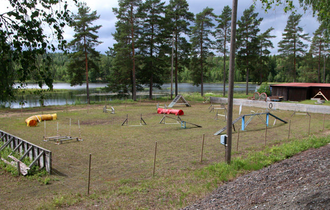 IMG_0924_650px-1